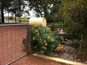 About our fencing contractors Perth & fencing contractors Bunbury.