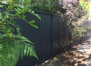 Colorbond fencing install in Perth – Ironstone