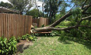 Fencing repairs Perth