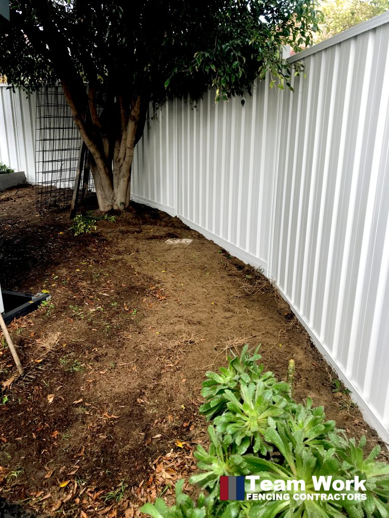 1800mm High Gray Colorbond Fencing Installation in Scarborough WA - Inside View