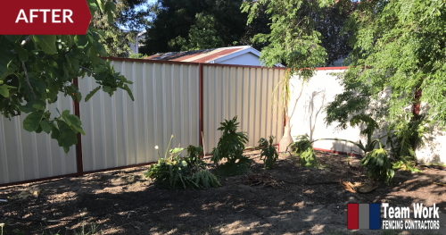 After Photo 1: Storm-damaged HardieFence replaced with Colorbond Fence in North Perth, WA