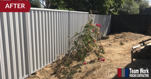 Storm Damaged Fence Replaced with Colorbond Fencing - After Photo