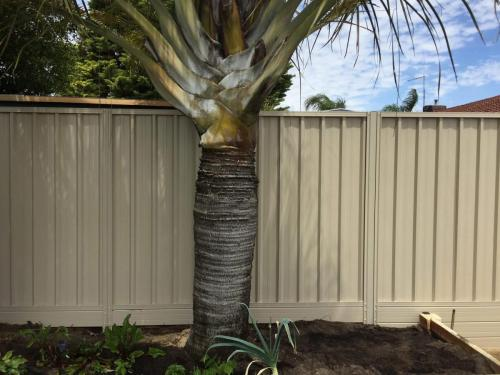 colorbond-fencing-in-perth